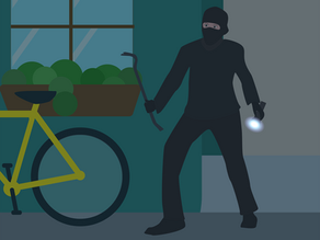 How to Secure Your Home from Burglars?
