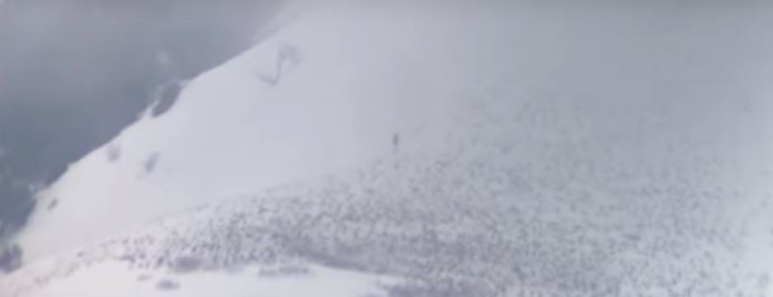 Sasquatch Filmed in Utah on Lone Peak