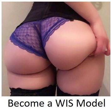 becomeaWISmodel.jpg