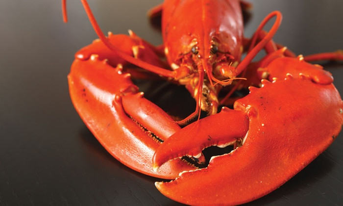 Maine Restaurant Sedates Lobsters With Marijuana Before Cooking Them
