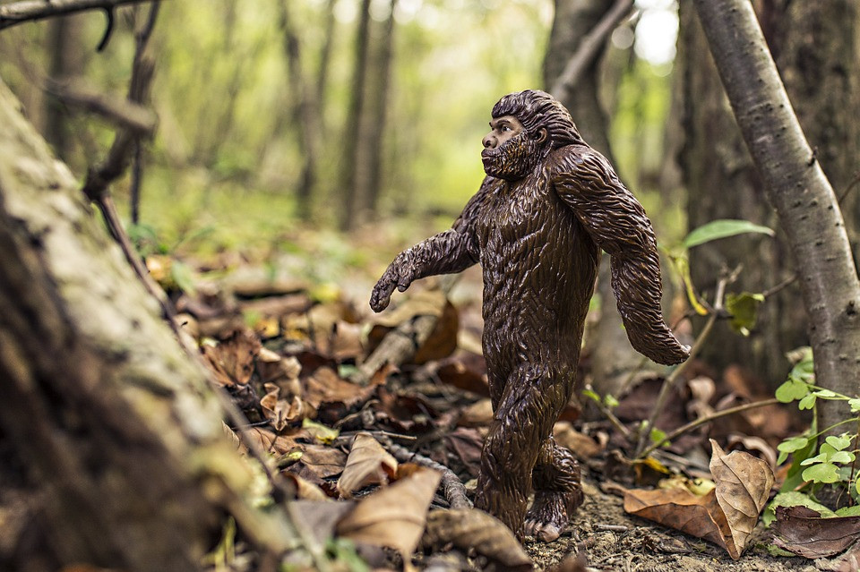 Man Arrested After Calling 911 About an Ax-Wielding Sasquatch