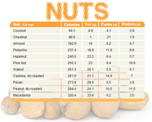 protein in nuts