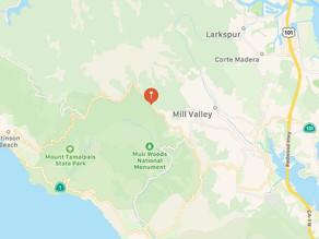 Weird Voices Heard Near Mount Tamalpais