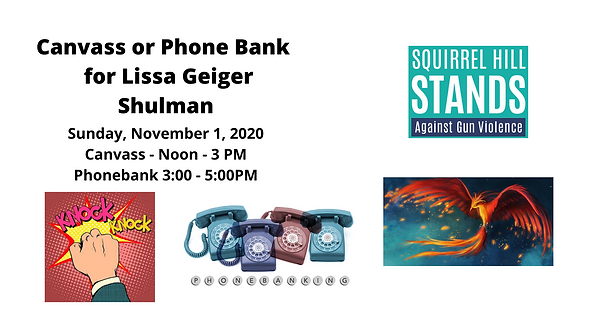 Virtual Phone Bank Party for Lissa Geige
