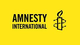 Amnestylogo.png