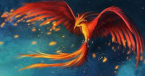 Phoenix_20200910144309162253 (2).jpg