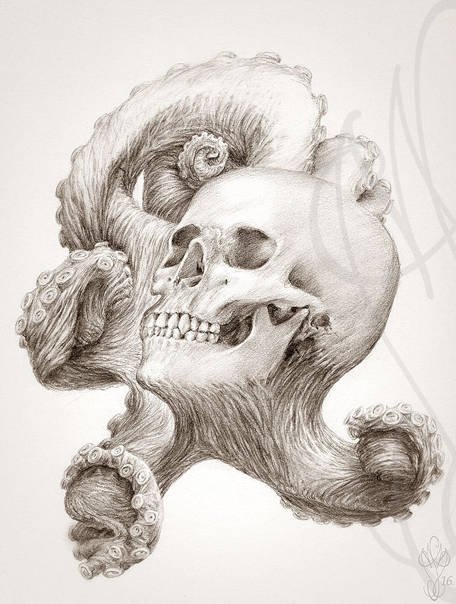 « OCTOSKULL #2 »