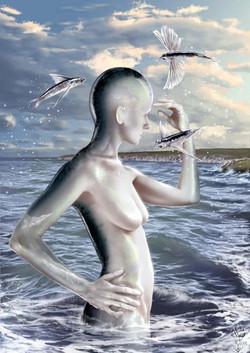 « CALM SEA »