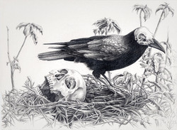 « LE NID DU CORBEAU » Dark Bird