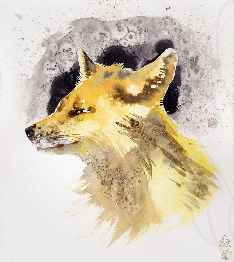 « FOX »