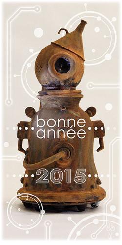« ROBOT 2015 »