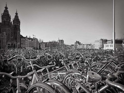 « AMSTERDAM »