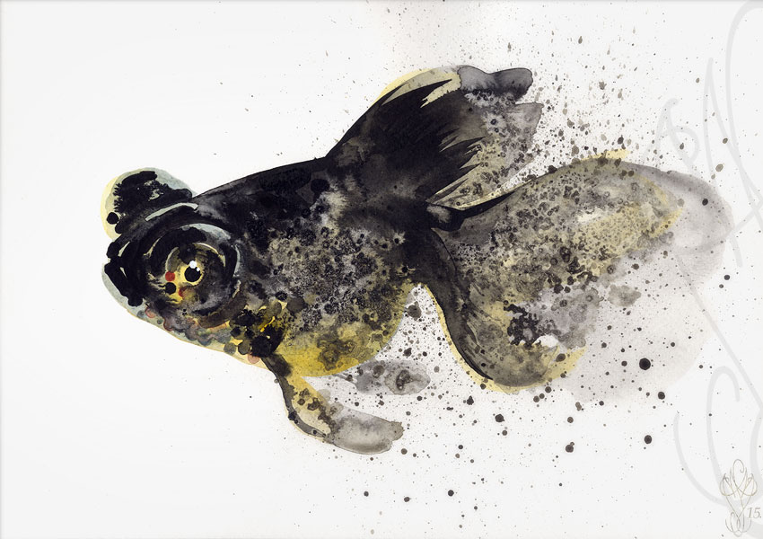« FISH »