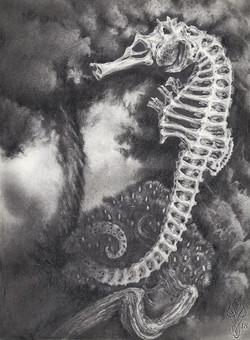 «SEAHORSE IN TURMOIL»