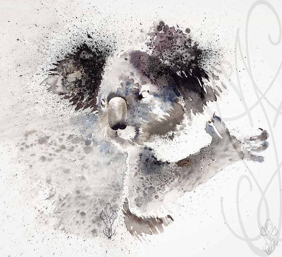 « KOALA »
