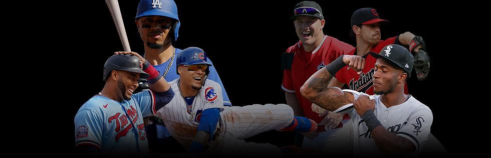 MLBPI web top.jpg