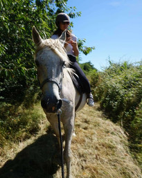 Baptème poney