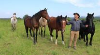 Frédéric Bonnand et ses chevaux
