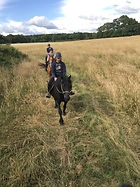Balade à cheval mayenne