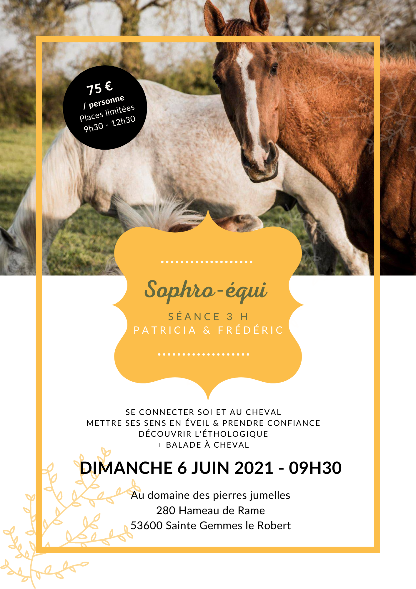 Matinée Sophro-Equitation 3 h