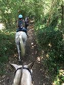 Ballade à cheval au Montaigu (53 Mayenne)