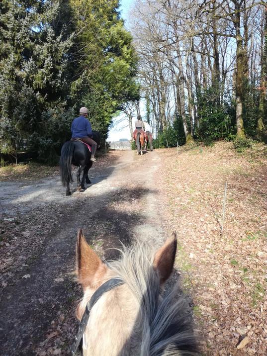 Balade à cheval