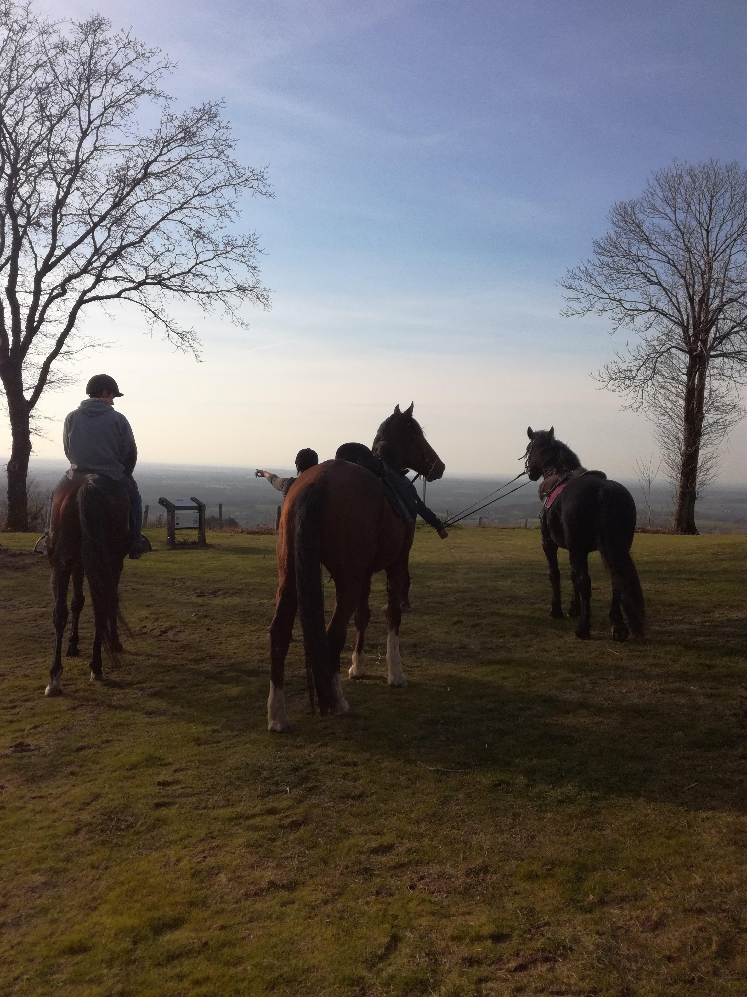 Balade à cheval Montaigu