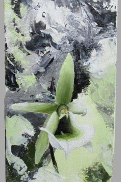 Orchidée abstraite