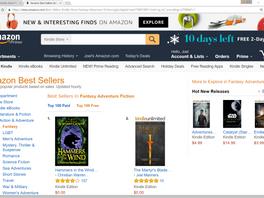 #2 Bestseller in Fantasy!