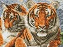 Diamond Dotz SQUARES- Tigres
