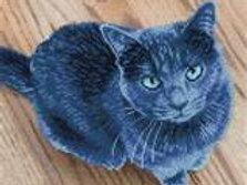 Diamond Dotz SQUARES - Velvet le chat