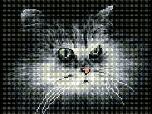 Diamond Dotz Square - Shadow cat