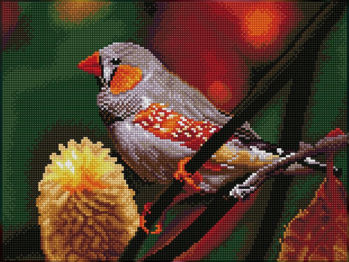 Diamond Dotz Square - Gouldian Finch