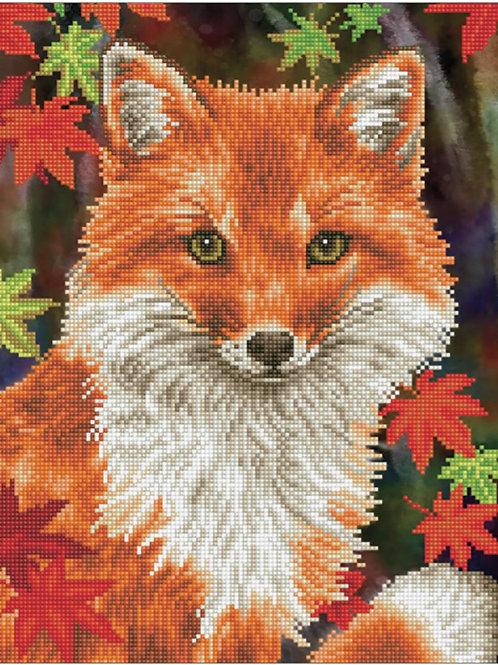 Diamond Dotz - Foxy