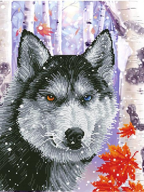 Diamond Dotz - Le Loup de la Forêt