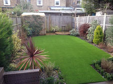 Tuesday evening back garden. 9th of Febr