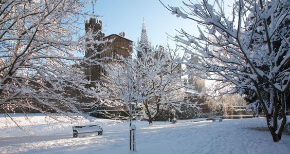 Cardiff castle in the snow Wednesday mor