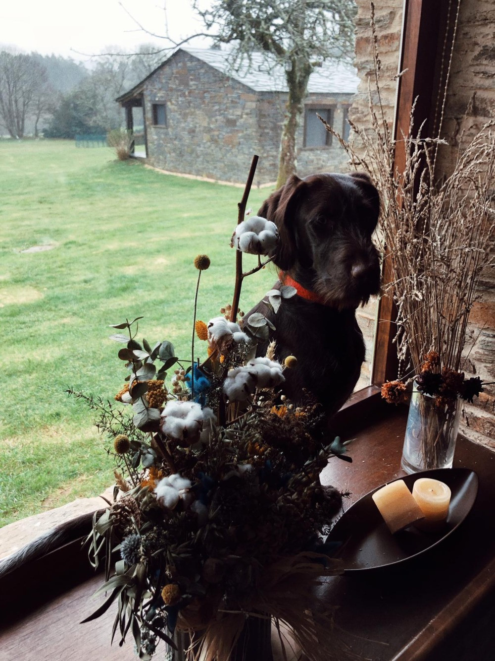 Casa rural pet friendly en Galicia