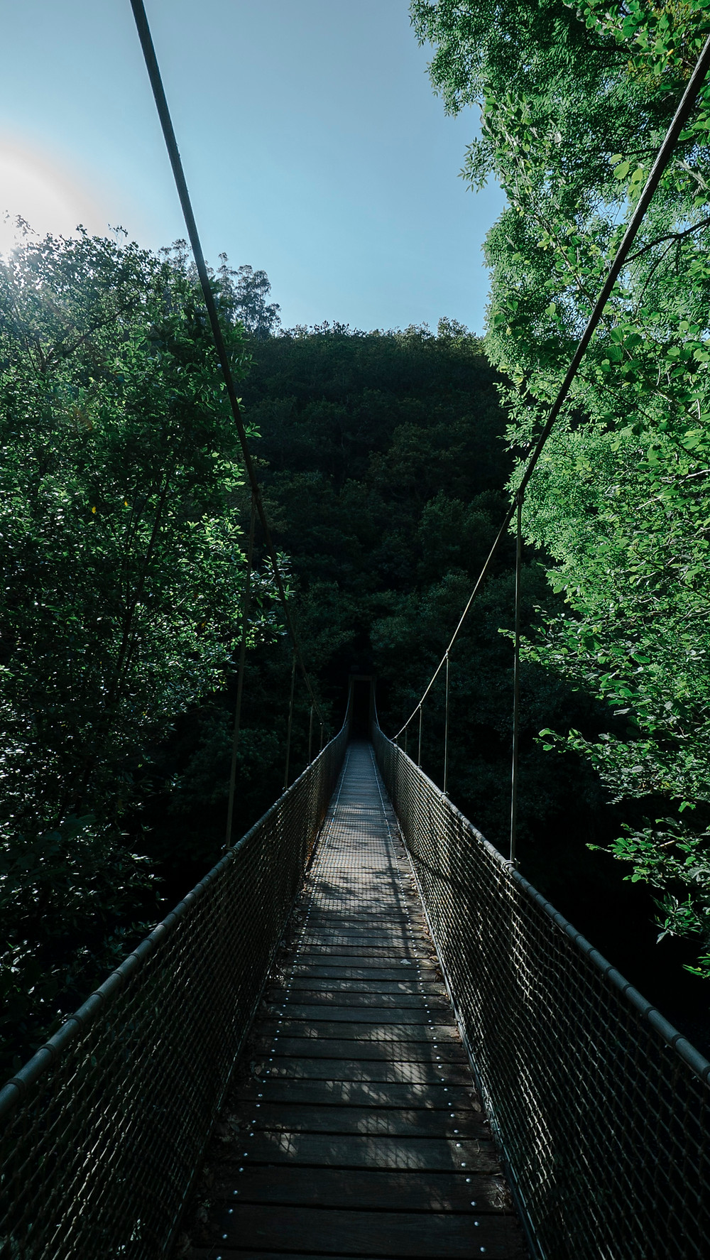 Experiencia en Casas do Campo, puente colgante fragas do eume