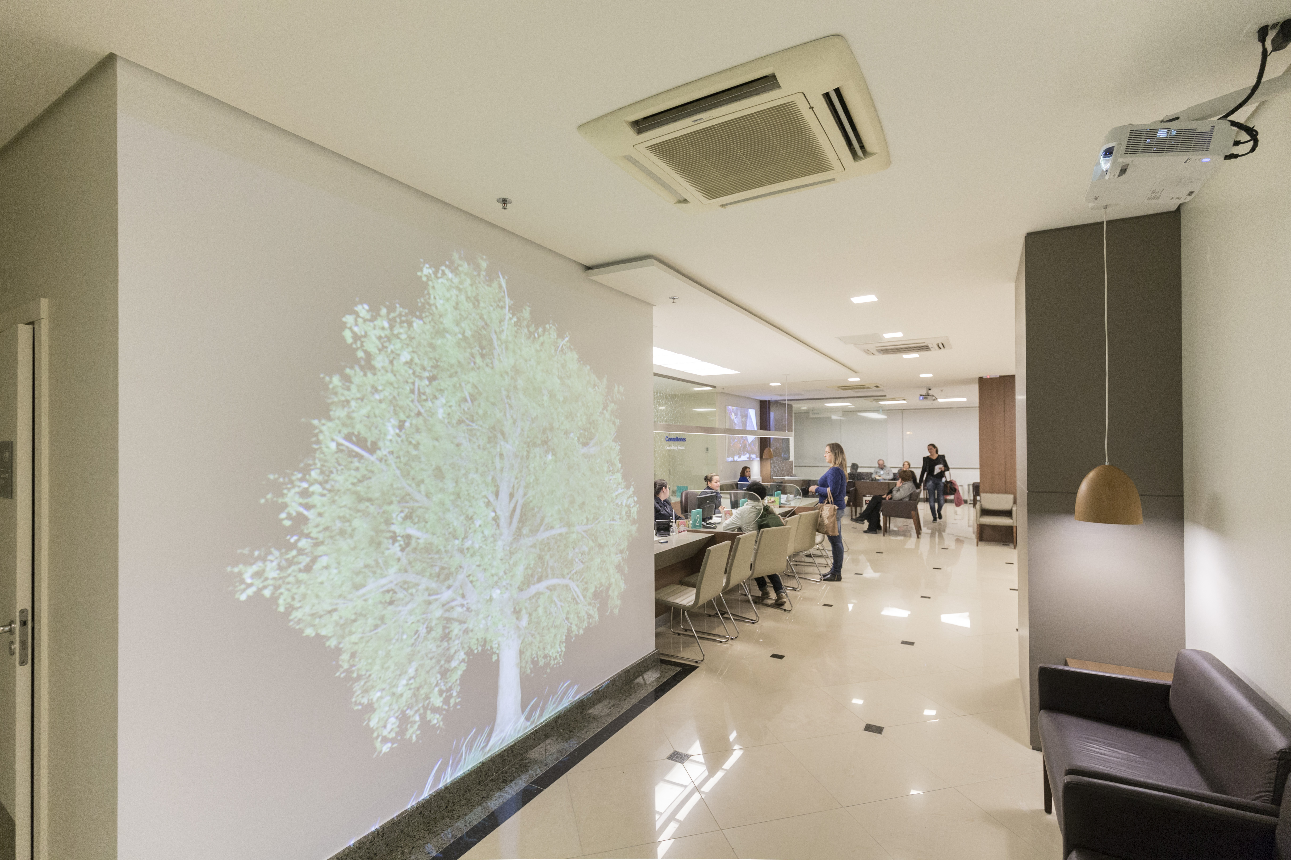Projeção mapeada árvore HMV