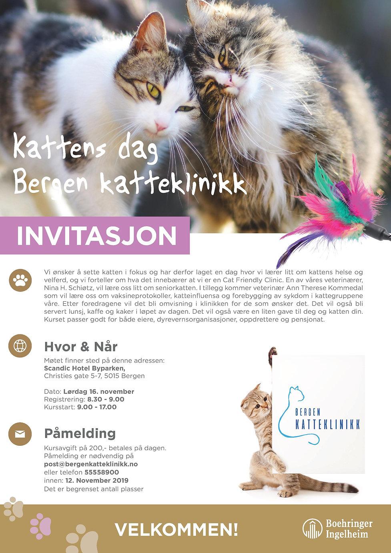 Kattens Dag invitasjon.jpg