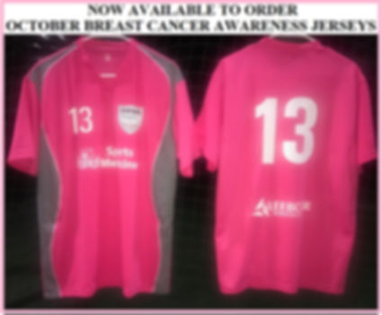 BREAST CANCER JERSEY PIC.jpg