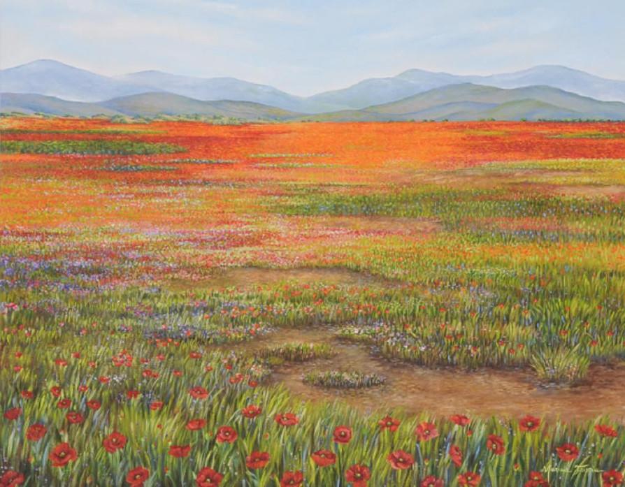 Flores Vermelhas no Campo