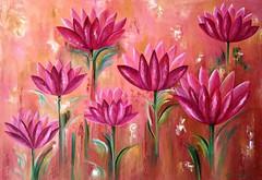 Lótus Pink