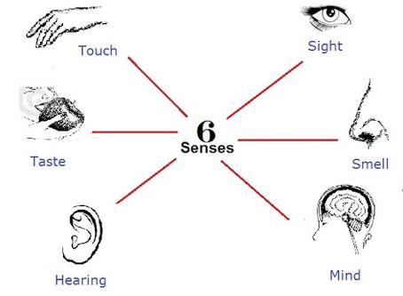 A Sixth Sense?