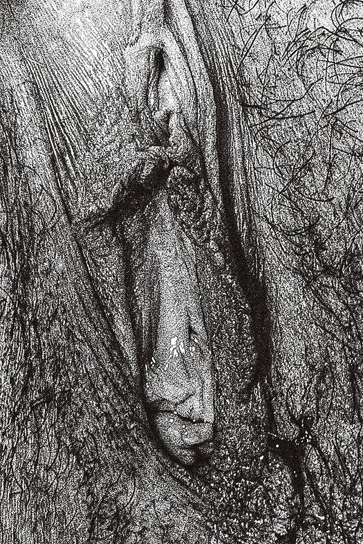 image-vagina.jpg