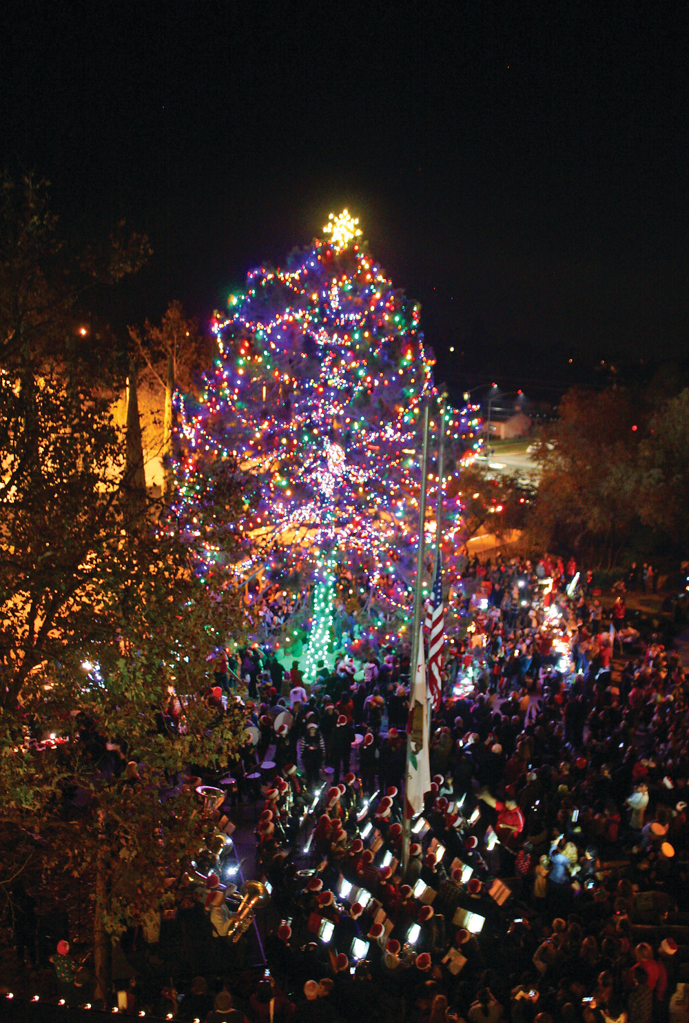 Fallbrook Tree Lighting