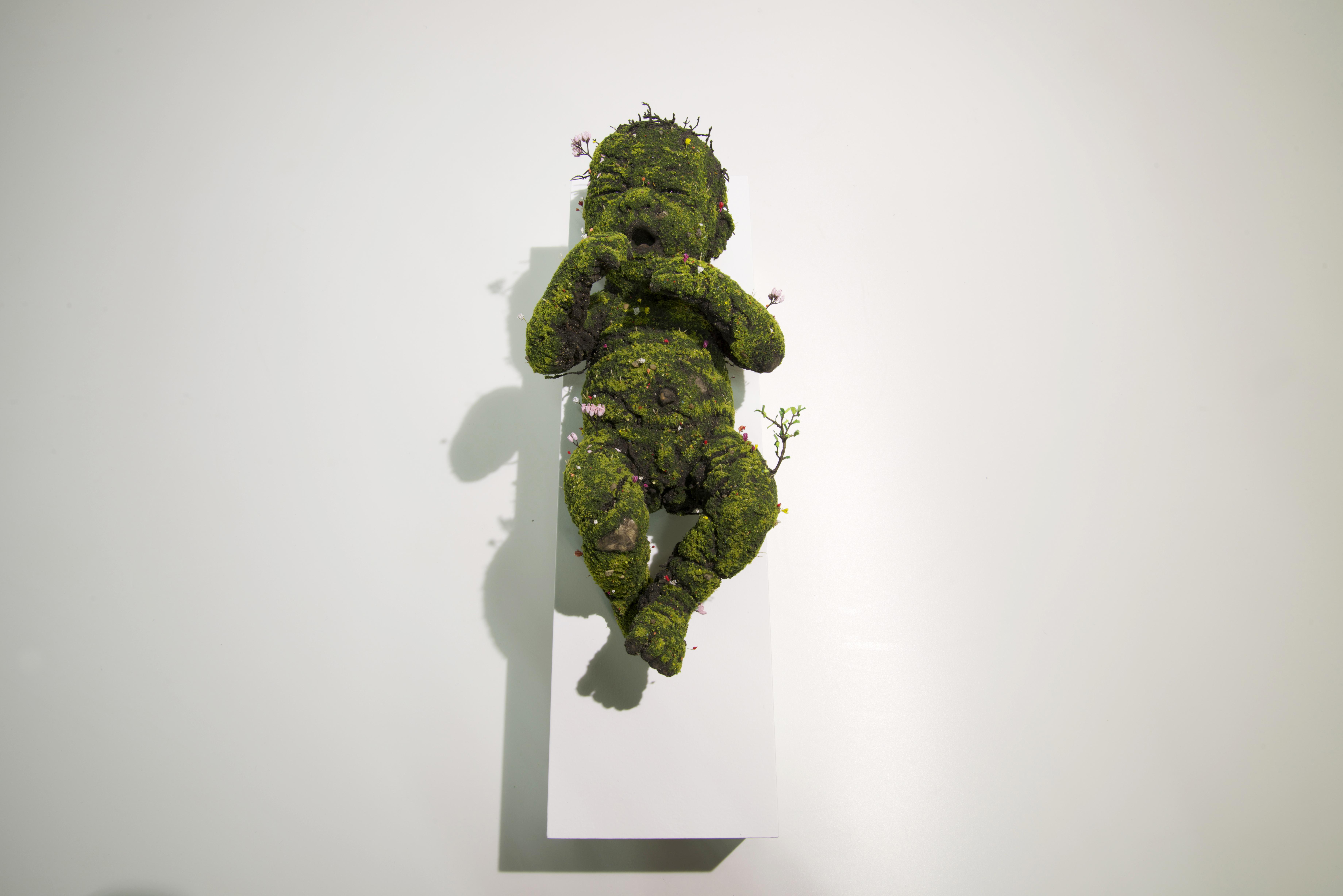 Homo Sapiens - Infant
