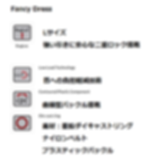 Fancy全表記 (2).png