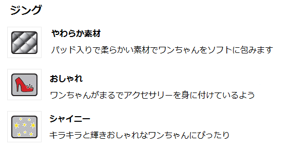 ジング説明書き (2).png